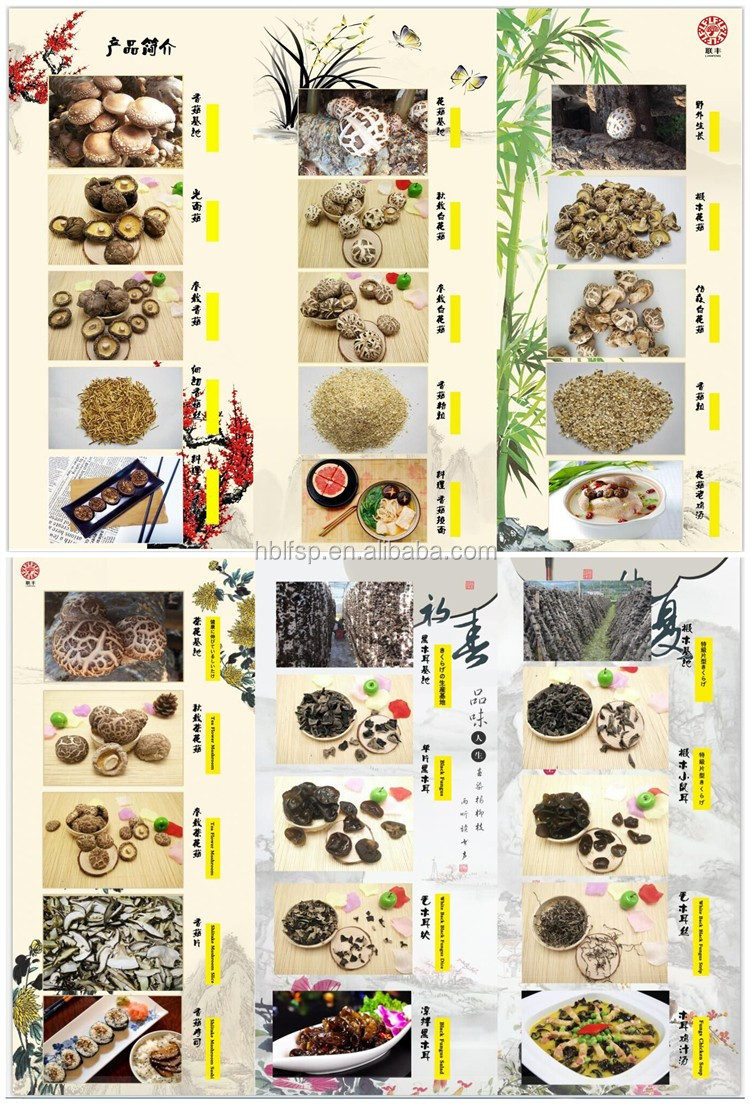Edible Dried Black Fungus Mushroom