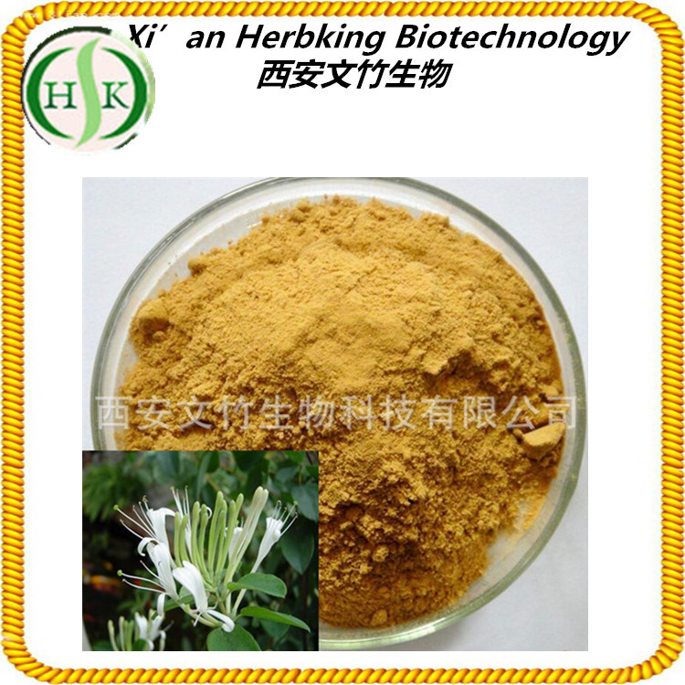 Plant Extract Chlorogenic Acid Honeysuckle Extract