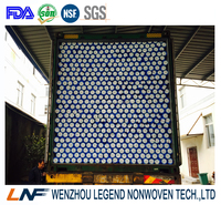 blue white fusible coating interlining fabric 1035HF for Algeria market