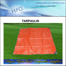 Hot selling great PE tarpaulin,Tarpaulin backpack
