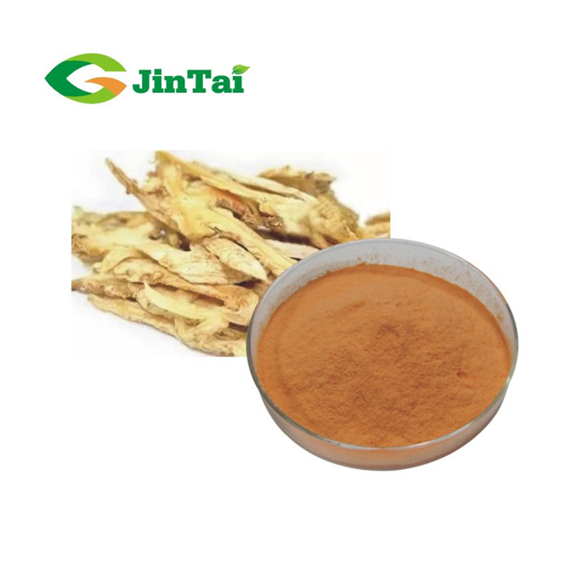 Bulk and factory Angelica herbal Extract Hot sales Radix Angelicae extract