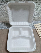 biodegradable unbleached bagasse pulp disposable divided food container