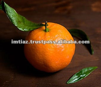 Sweet Mandarin Orange Fresh Pakistan