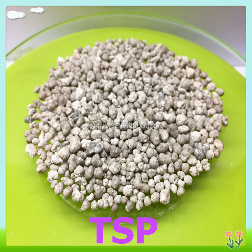 Rock phosphate triple super phosphate in granular TSP