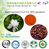 Top quality Fructus Gardeniae P.E. /Cape Jasmine Fruit Extract 98% Gardenoside CAS:24512-62-7