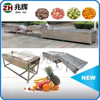 High quality multifuctional fruit and vegetable washer/apple citrus pear tomato potato sorting machine