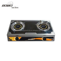 Auto ignition luxury gas stove