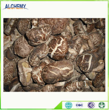 Quality Dried Shiitake Mushrooms