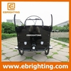 cargo delivery bike three wheel motorcycle cargo for family
