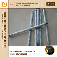 zinc coated 45# steel concrete nails 1 kg box Tianjin China