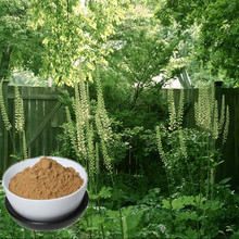 100% natural high quality 2.5% high quality black cohosh extract(triterpene glycosides)