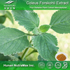 Forskolin Powder, Forskolin Extract , Forskolin