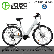 2016 new model central motor electric cargo bike