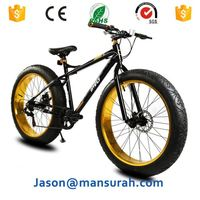 Royalbaby Freestyle Mountain Bicycle With Wide Pneumatic Tires And Steel Frames
