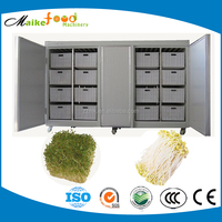 HOT! China made little type mung bean sprout machine for sale