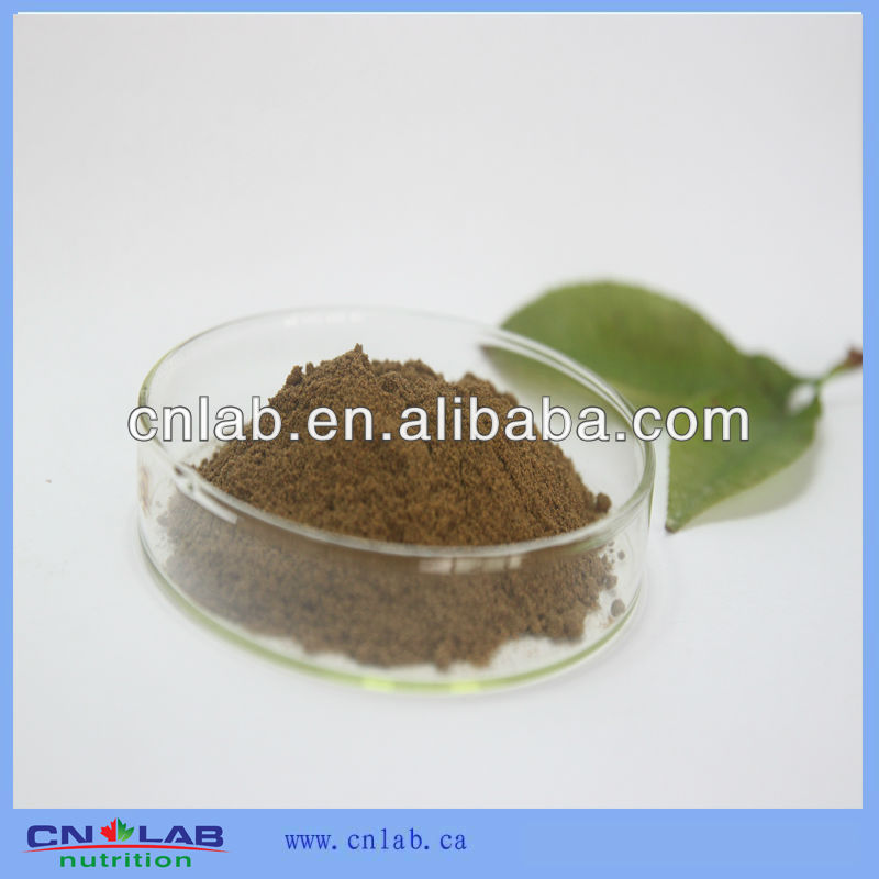 NSF GMP HALAL Certified Pure Natural Ginkgo Biloba Powder/Ginkgo flavone Glycosides 24%/Lactones 6% HPLC