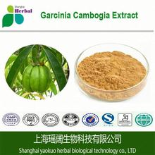 High quality&natural garcinia combogia extract,garcinia cambogia extract power,garcinia combogia p.e. with best price