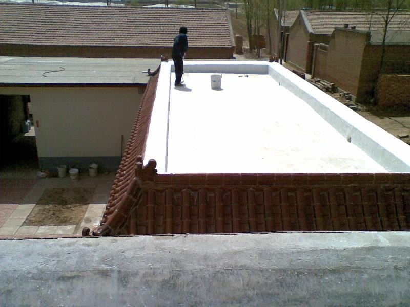 Cheap Flexible Waterproofing materials for Toilet Wall Coating concrete cement base