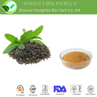 GMP Organic 80% tea polyphenol/60% Catechins/30%EGCG green tea extract