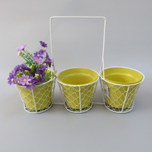 Country Style galvanized white wire mesh baskets 100% biodegradable plant fibre pot