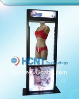 New Invention ! magnetic levitation led display rack for underwear, big bra girls photos