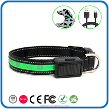 Good Quality Ce Nylon Webbing Illuminated Night Safety Led Dog Collar