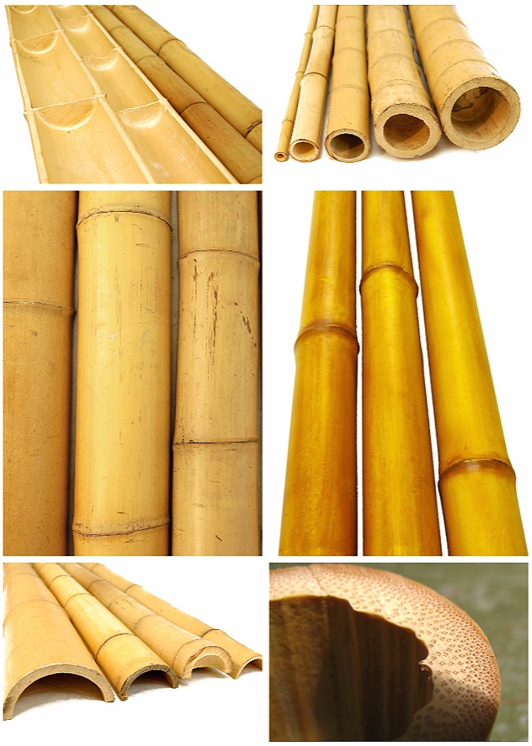 Large dry raw moso bamboo poles for sale buy