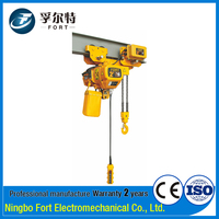 ISO Certification 1 Year Warranty Lightweight 2 Ton Electric Chain Hoist