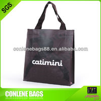 eco-friendly pp non woven promotional bag