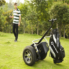 cheap electric scooter for adults two wheel for golf,Chic Hot selling big scooter for sale