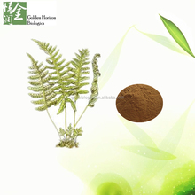 Top quality Polypodium Leucotomos extract 10% triterpenoid saponin