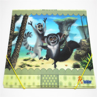 Vivid animal koala printing A4 PP 3D file folder with elastic band