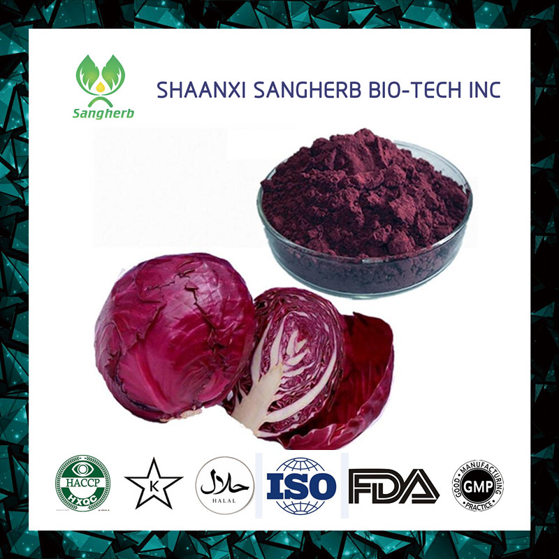 Pharmaceutical and food Grade cabbage juice concentrate powder Brassica oleracea L. Var. Capiata L. Vitamin A 1%-98%