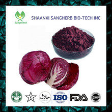 Pharmaceutical and food Grade cabbage juice concentrate powder 10:1Brassica oleracea L. Var. Capiata L. Vitamin A 1%-98%