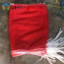Export to Libya red color vegetable fruit net small pp bag