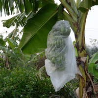 Mildew proof Competitive price and quality Acid-resisting non-woven fabric for agriculture