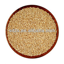 high quality bulk sesame seed with best price