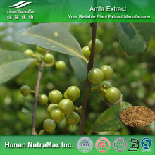 Health Food Alma Extract, Alma Extract Powder, Alma Powder