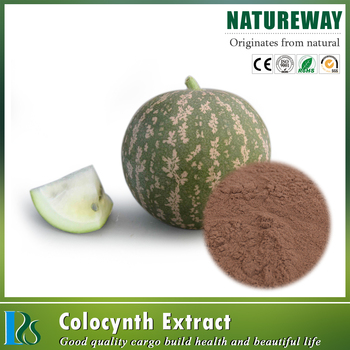 Hot Selling natural organic Citrullus colocynthis Extract powder