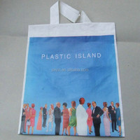 Promotional Supermarket Custom Colorful Printed Recycled Plastic Bag