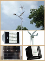 Popular new energy wind solar light