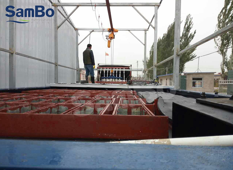 With Crane, Automatic Operation SamBo Ice Plant 30 Ton/Day Block Ice Machine Factory