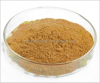 GMP factory supply Hot sale high quality Isatis Indigotica Fort extract Isatin 1%