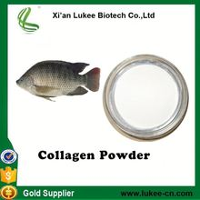 High quality organic fish collagen powder/salmon fish collagen powder