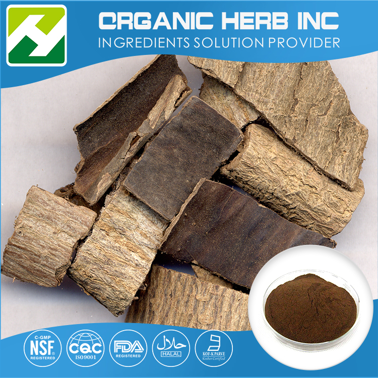 New product healthy eucommia leaf extract
