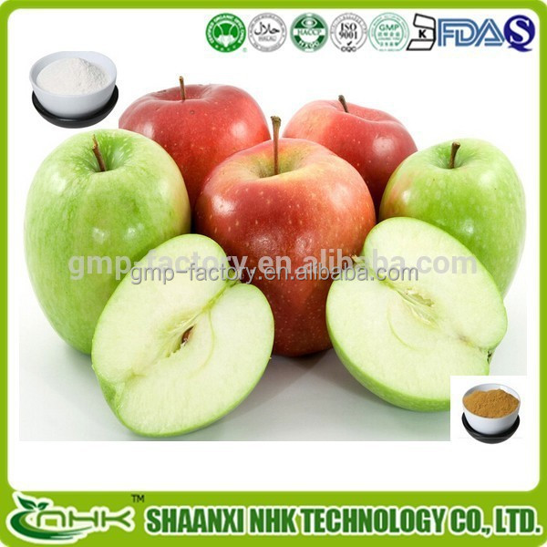 apple pectin/apple pectin extract/apple pectin powder