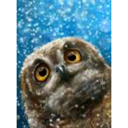 New fashion customized owl <strong>picture</strong> 5d diy resin diamond painting
