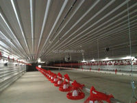 egg layer chicken poultry shed for sale