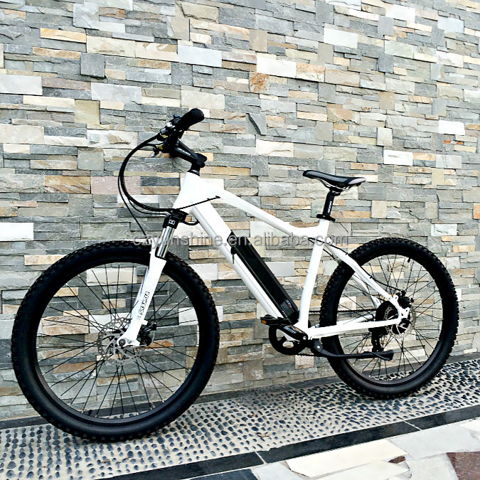 New design Designed specially for lady's electric bike e-bike