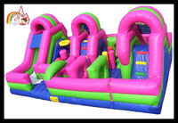 Outdoor commercial Inflatable Giant Slide Playground Fun city pink